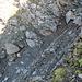 Schuttiges und abschüssiges Gelände in der Südflanke, in die man zur Umgehung des Ostgipfels ausweicht. Schutt- und Felsbänder ermöglichen ein einigermassen gemütliches Vorwärtskommen