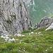 steiler Anstieg über Schrofen zum Hundstein, immer wieder kurze Kletterpassagen (I)
