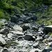 Torrente Cannobino in prossimità delle sorgenti