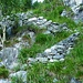 Am Weg Sotto Sasso Torrasco im Valle di Sementina