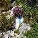 Blumen der super Markierung - Blumen als Dank für die 2002 ausgebauten Ziegenpfad