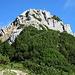 Läuferspitze von Süden.<br /><br />Mein Aufstieg zur Felsstufe erfolgte von links über die schuttige Flanke.<br />Der Abstieg nach der Felsstufe rechts über ein Blockfeld und eine Latschenrinne.<br />