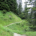 Abstieg durch das Seebachtal