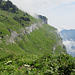 ganz schön steil die Grashalden weiter rechts