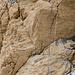 Unterer Übergang Eis/Fels mit dem Fixseil. Links im Bild sind noch einige Stahlstifte (sowie ein zurückgelassener Bohrer)