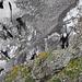Aufstieg zur Grünhornhütte