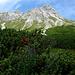Blick mit stolzer Brst vom Saulajoch zum Saulakopf nach einer Saulangen Klettersteigtour