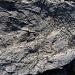 spezielle Gesteine am See bei der Fuorcla digl Leget