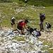 Mountainbiker am Gipfel des Hochstuhl