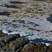 die Seenplatte beim Hochtor