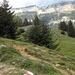 Blick zur Ebenalp auf der anderen Talseite