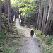 Gemütlicher Wanderweg nach Weissbad