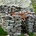 Die Ruine der Alp Gonta bei Pt.1991