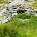Käsehüttli der verfallenen Alp Pianconi 1877m