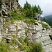 Und Alles schön den Wänden nach - Alter Alpweg oberhalb Alpe Larecc 1741m