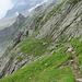 Der lange Weg zur Leutschachhütte