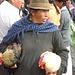 le marché d'Otavalo le samedi est très pittoresque