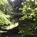 Die Waldkapelle Ottenegg