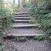 Der Treppenweg aufs Hörnli