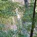 Der Necker hat nahe seiner Quelle ein tief eingeschnittes Flussbett, daher münden die Zuflüsse in Wasserfällen.