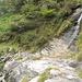 sentiero del versante destro della Val di Foo