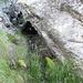 fessura obliqua da attraversare per accedere a due gronde interne ad un grosso vano, e di cui si intravede la muratura in pietrame