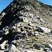 Guspissattel und der Schlussaufstieg zum Gipfel
