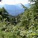 Aufstieg an der Sesselliftbahn zum Brentenjoch