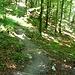 Il sentiero nel bosco che scende ad Au.