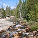 auf der Hochebene vom little Yosemite Valley