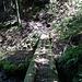 solche Brücken gab es mehrere