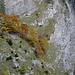 Herbstfarben in die Wände der Schlucht