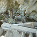 Wasserrad mit Klopfhammer