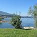 schöner Platz am See bei Altenrhein