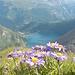Aussicht auf den Lago di Morasco