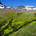 Gipfel, Schnee, Schutt, Vegetation - alpines Gelände
