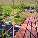 Eine solide Brücke führt hinüber zu den Vistas Hütten