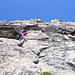 Mrs Pink climber