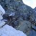 (1a) Aufstieg über Fixseil zum Felsriegel. (Fixseil hängt nur noch an wenigen Kern-Fasern!!)