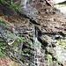 Faed di Sign ist eine sehr wasserreiche Gegend und wichtig für Someo