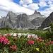 Schöne Licht ins Hangenalpeltal, mit Morgenkopf(2498m) und Schwabenalpenkopf(2687m).