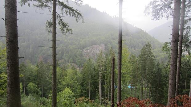 Klettersteig Schwarzwald : Senkrecht nach oben klettersteige im stubaital planetoutdoor