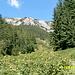 Wanderweg talaufwärts im Dolina Siedmich pramenov  - Dahinter der Kamm der Weißen Tatra (Belianske Tatry)