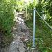die neu gesicherte Route auf den Hohenkrähen nach dem Erdrutsch von 2007. Sicher nicht attraktiver als vorher. Immerhin ist er wieder zugänglich.