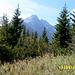 Blick zum Hauptkamm der Hohen Tatra - in Bildmitte der Lomnicky stit (2634 m) - zweithöchster Berg der Tatra und der Slowakei. Dort führt eine Seilbahn hinauf - bis zum Gipfel ...