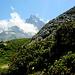 Die letzte Etappe vor Petit Mountet führt durch zauberhafte Vegetation