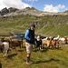 l'infreddolito Ivan: manca giusto il bastone ed è un perfetto pastore!!!