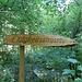 so lange wollten wir nicht unterwegs sein - und liefen quer dazu im Wald ...