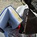 Ich weiss nicht, ob hier schon drüber berichtet wurde. Also:<br /><br />Das Gipfelbuch am Piz Polaschin ist etwas ramponiert. Das was da auf der Foto wie Schimmel aussehen mag, ist keiner. Offensichtlich hat ein Blitz in den Gipfelsteinmann eingeschlagen, ein kreisrundes Loch in den Kupferbehälter geschweisst (drittes Loch von oben). Die resultierenden Funken und verglühenden Kupfersplitter haben dann das Buch angeschmürzelt. Wenn man weiss, wie gut der Kassiber im Steinman 'vergraben' ist und das sieht, läuft es einem kühl den Rücken runter. Was für eine Naturgewalt!