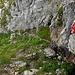 Nach übersteigen eines Maschenzaunes führt ein kurzes, steiles Wegstück der Felwand entlang.